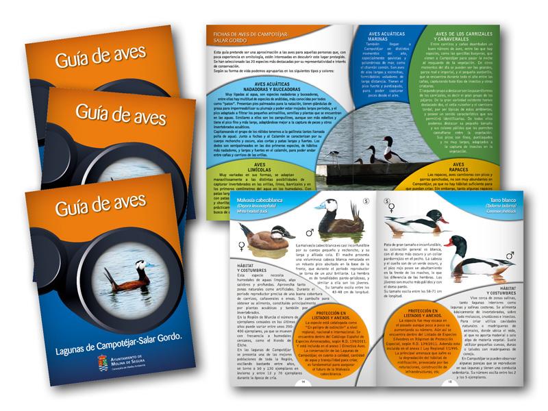 Guía de aves. Proyecto europeo LIFE.